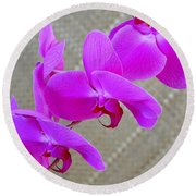 Green Field Sweetheart Orchid No 3 Round Beach Towel