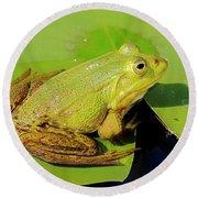 Green Frog 2 Round Beach Towel