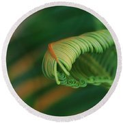 Green Frond  Abstract Round Beach Towel
