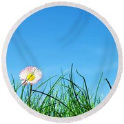 Green Grass And A Flower Round Beach Towel