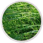 Green Grass Growing Round Beach Towel