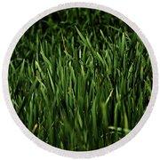 Green Green Grass ... Round Beach Towel