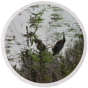 Green Heron At The Pond Round Beach Towel