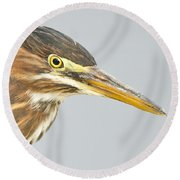 Green Heron Close-up Round Beach Towel
