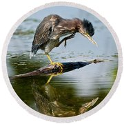 Green Heron Pictures 488 Round Beach Towel