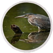 Green Heron Pictures 491 Round Beach Towel