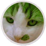 Green Kitten Round Beach Towel