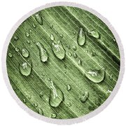 Green Leaf Background With Raindrops Round Beach Towel
