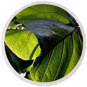 Green Leaf I Round Beach Towel