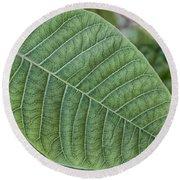 Green Leaf Macro Round Beach Towel