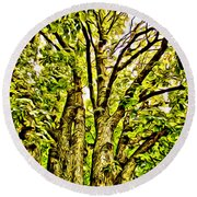 Green Leafy Trees Round Beach Towel