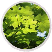 Green Leaves Canvas Round Beach Towel