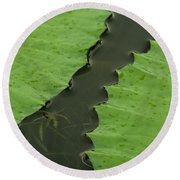 Green Leaves Series  4 Round Beach Towel