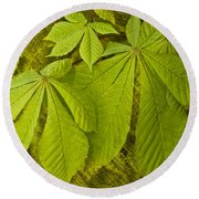 Green Leaves Series Round Beach Towel by Heiko Koehrer-Wagner