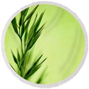 Green Round Beach Towel