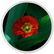 Green Loves Red Loves Green Round Beach Towel