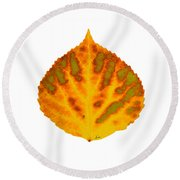 Green Orange Red And Yellow Aspen Leaf 1 Round Beach Towel