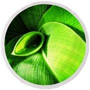 Green Paradise - Leaves By Sharon Cummings Round Beach Towel