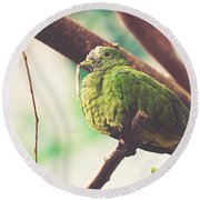 Green Pigeon Round Beach Towel