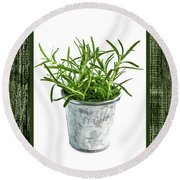 Green Rosemary Herb In Small Pot Round Beach Towel