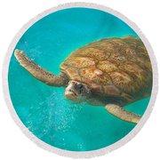 Green Sea Turtle Surfacing Round Beach Towel