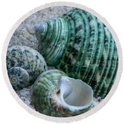 Green Seashells Round Beach Towel