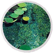 Green Shimmering Pond Round Beach Towel