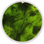 Green Surface Round Beach Towel