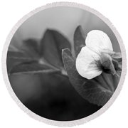 Green Sweet Pea Flower In Black And White Round Beach Towel