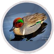 Green Winged Teal  Duck  Round Beach Towel