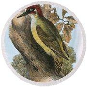 Green Woodpecker Round Beach Towel
