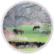 Greener Pastures Round Beach Towel