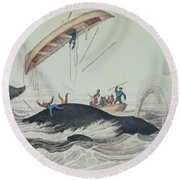 Greenland Whale Book Illustration Engraved By William Home Lizars  Round Beach Towel