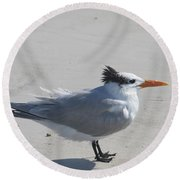 Tern Round Beach Towel