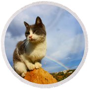 Grey Cat And Rainbow Round Beach Towel