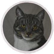 Grey Cat Round Beach Towel