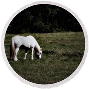 Grey In The Pasture Round Beach Towel