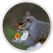 Grey Squirrel Tucking In Round Beach Towel