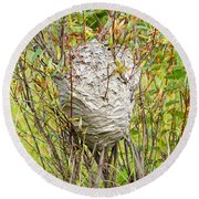 Grey Wasps Nest In Willow Bush Round Beach Towel