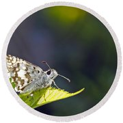 Grizzled Skipper Two Round Beach Towel