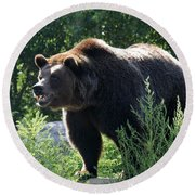 Grizzly-7756 Round Beach Towel