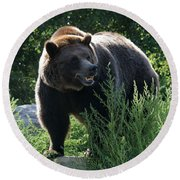 Grizzly-7759 Round Beach Towel