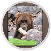 Grizzly Bear 01 Round Beach Towel