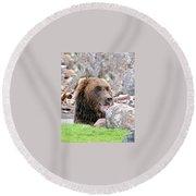 Grizzly Bear 02 Postcard Round Beach Towel