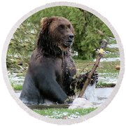 Grizzly Bear 6 Round Beach Towel