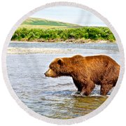 Grizzly Bear Determined To Catch A Salmon This Time In The Moraine River  Round Beach Towel