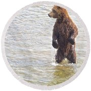 Grizzly Bear Standing To Get A Better Look In The Moraine River In Katmai Round Beach Towel