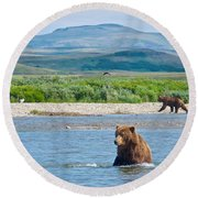 Grizzly Bears In Moraine River In Katmai National Preserve-ak Round Beach Towel