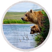 Grizzly Bears Peering Out Over Moraine River From Their Safe Island Round Beach Towel