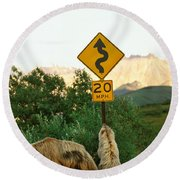 Grizzly Cubs Round Beach Towel